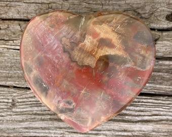 "Petrified Wood Heart Shape Mineral Crystal Polished Carved Stone 3"" Free shipping (1)"