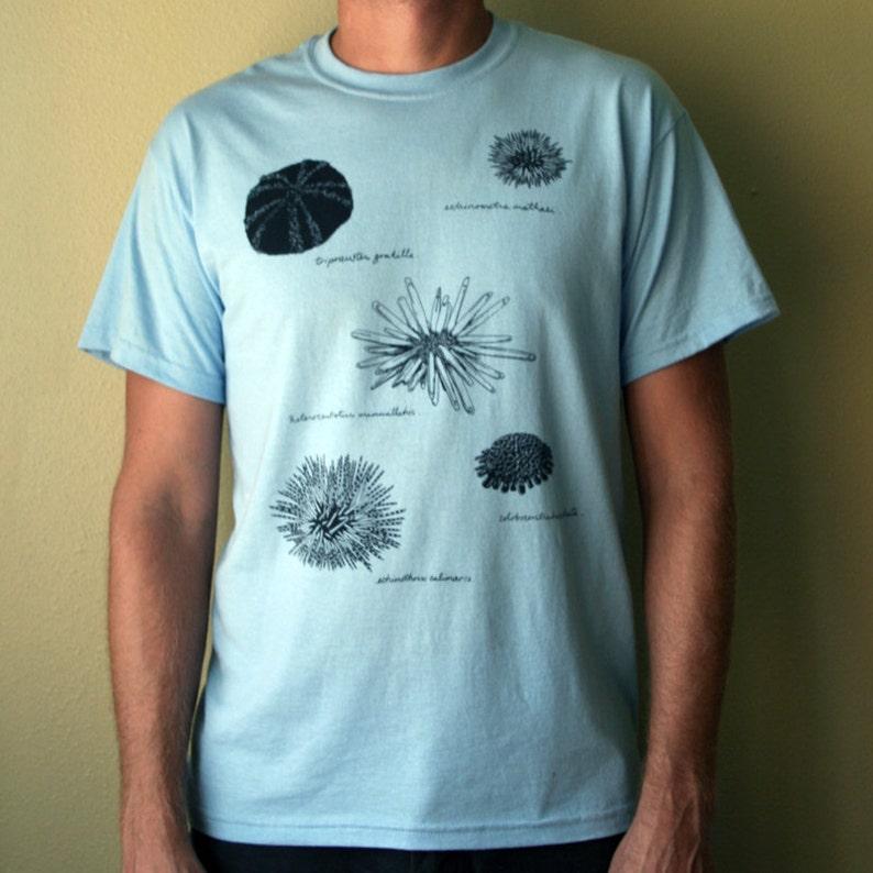 sea urchin t-shirt  natural history illustration image 0