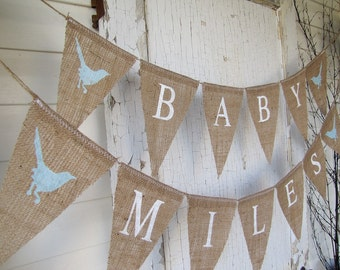 Baby Banner...Boy or Girl