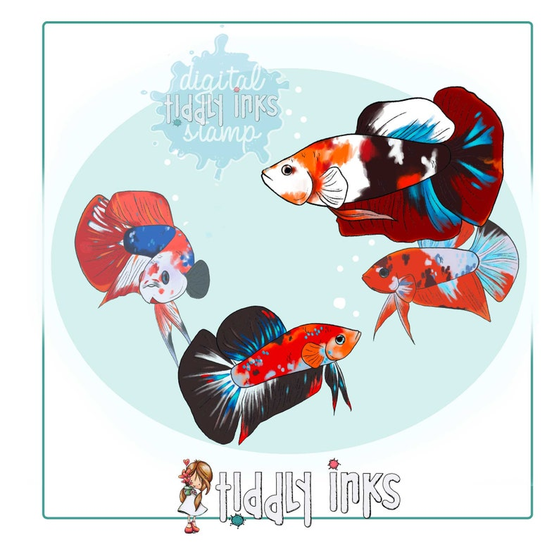 Betta Fish  4 Digital Stamps and Colored Versions image 0