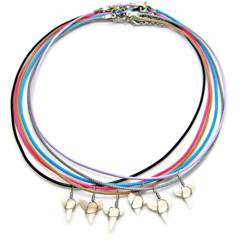 12 Pc Lots White Shark Tooth Necklaces Great Party Favors image 0