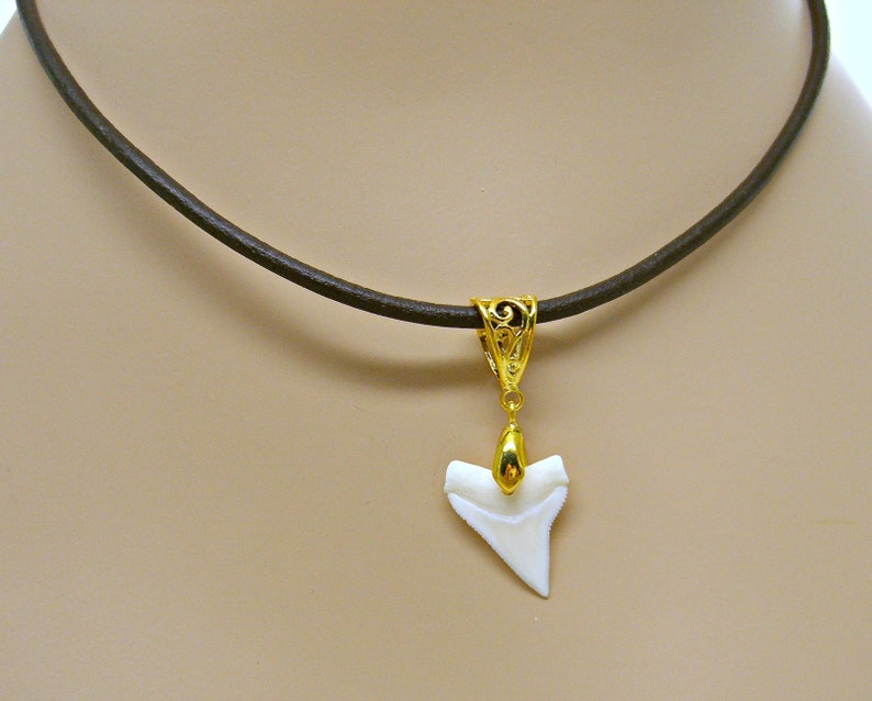 2b6beca109832 White Tip Shark Tooth 3mm Leather Necklace Gold Plated Bale Jewelry Pendant  Black or Brown