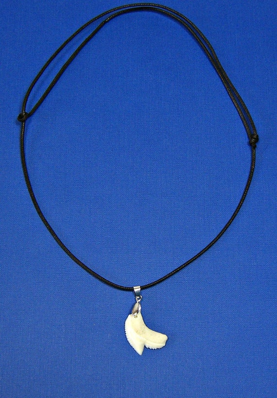 """1/"""" Tooth With Adjustable Black Cord 14/""""-22/"""" Real Tiger Shark Teeth Necklace"""