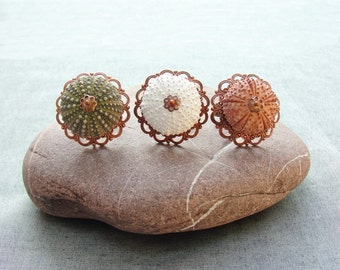 Sea Urchin Collection - Vintage Copper Ring - Pick Your Color -Green White Pink