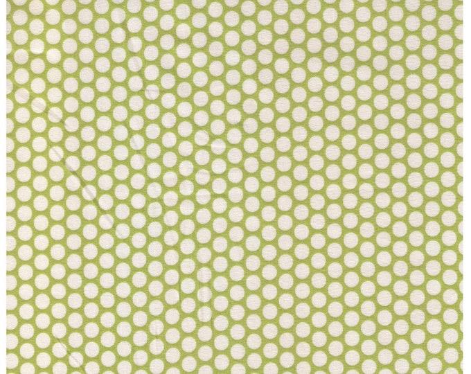 HALF YARD Yuwa Fabric - Cream Kei Honeycombs on Green Cream Background - Colorway 104 - Polka Dots by Kei - Japanese Import Fabric