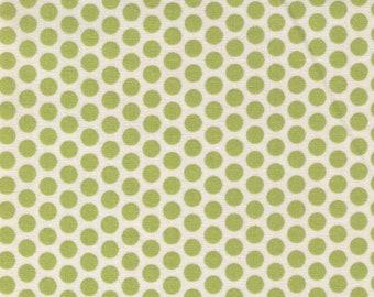 HALF YARD Yuwa Fabric - Green Kei Honeycombs on Ivory Cream Background - Colorway 4 - Polka Dots by Kei - Japanese Import Fabric