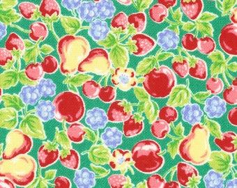 HALF YARD Lecien - Orchard Kitchen 2017 - Basket of Fruits on GREEN 31738-60  - Apple Cherry Strawberry Raspberry - Japanese Import