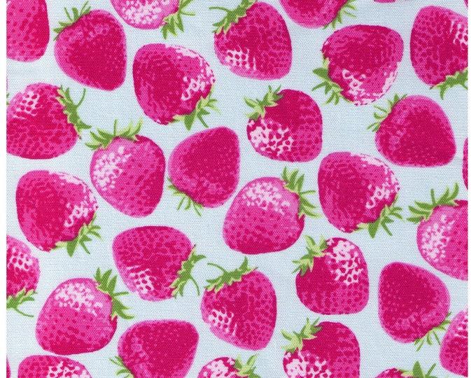 HALF YARD Kiyohara - Jumbo Strawberries on Light BLUE - 95-bl  Imported Japanese