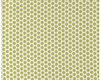 HALF YARD Yuwa Fabric - Green Kei Honeycombs on Ivory Cream Background - Colorway 4 - Polka Dots by Kei - Japanese Import Fabric