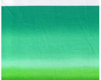 HALF YARD Yuwa - Green Ombre Stripes  - Yoshiko Jinzenji - Low Volume Print - Japanese Import Fabric JZ-804788-E