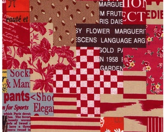 HALF YARD Yuwa - Cheater Plus Print in Red - Suzuko Koseki 829607-F - Japanese Import- Paris Bonjour France Pattern Daisy