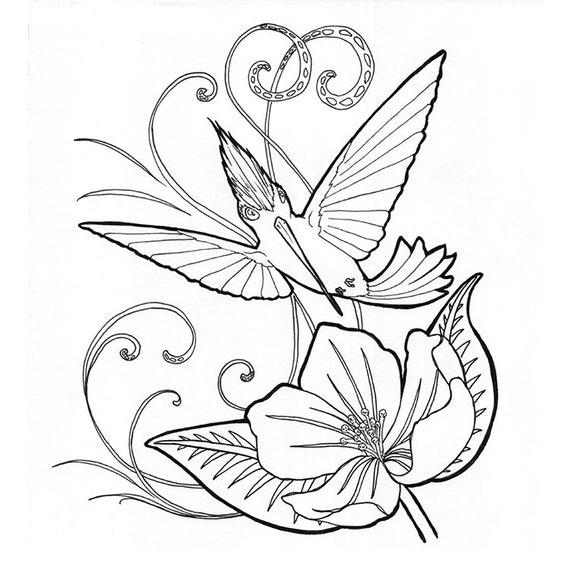 Colibrí no. 200 / día Doodle / ilustración / página para   Etsy