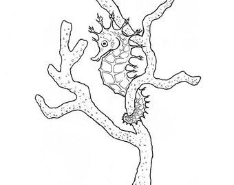 No.206 Hidden / Original Artwork / Illustration / Daily Doodle / Art Print / Seahorse