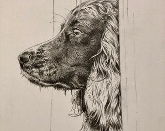 Custom Pencil Portraits (Pet or a Person)
