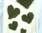 Garden Art, Moss Art, Recycled Wood Art, Moss Hearts, Terrarium Moss, Garden Decor Sign, Hearts on Wood, Reclaimed Wood, Woodland Nature Art