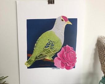 Rose-Crowned Fruit Dove 11x14 Digital Print
