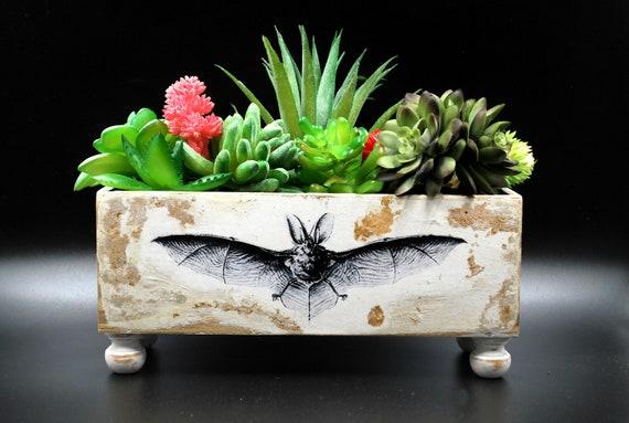 Indoor Bat Gothic Succulent Planter - Monster Bat Creepy Horror Gothic Handmade Folk Art Primitive