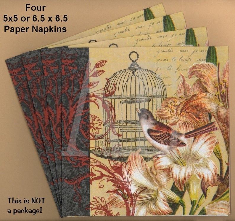 PN082 ~ Four Paper Napkins by Hoffmaster ~ Choose 5x5 or 6.5 x 6.5 or 4.5 x 8 Pretty French Collage Birdcage Soiree Bird Lilies Fleur-De-Lis