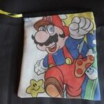 Super Mario Brothers reversible dice bag