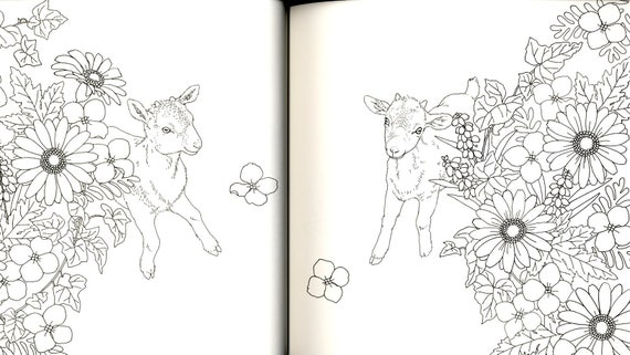 Forest Animals Coloring Book - Japanese Coloring Book