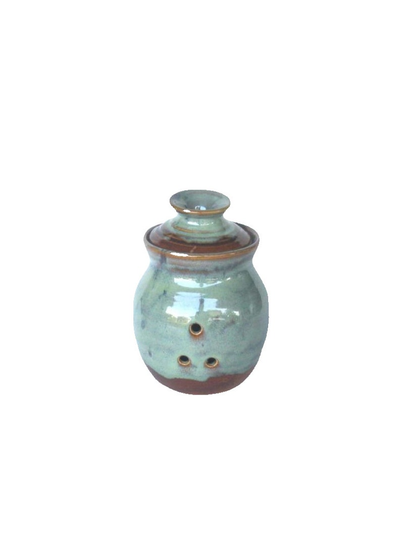 Garlic Keeper Storage Jar  Ponderosa Glaze image 0