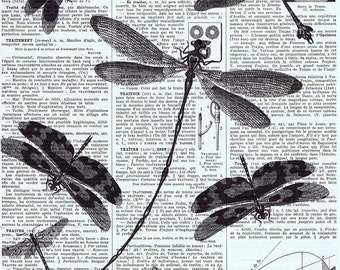 Spring, Repurposed Vintage Book Page Prints /  Dragonflies, Vintage Illustration, home decor, birthday, gift, deal, affordable