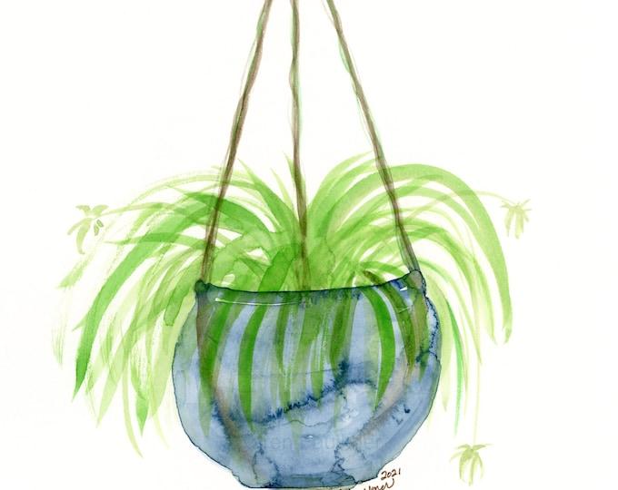 "Original houseplant watercolor, ""Spider Plant"""