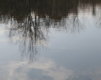 Reflection of trees and sky in pond stock photo image free use