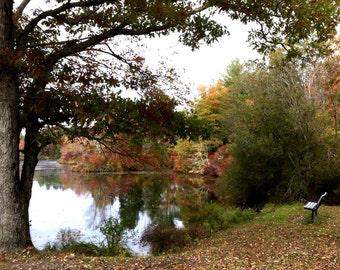 Autumn fall pond foliage park bench stock photo image free use