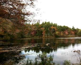 Autumn fall pond foliage stock photo image free use