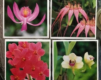 Ceramic coasters set Orchids flowers