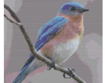 Eastern Bluebird, pattern for loom or peyote