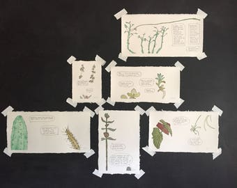Custom Plant Communication Painting (Houseplants)