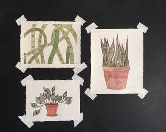 Mystery Plants Have Eyes/Plants Can See Painting (Houseplant)
