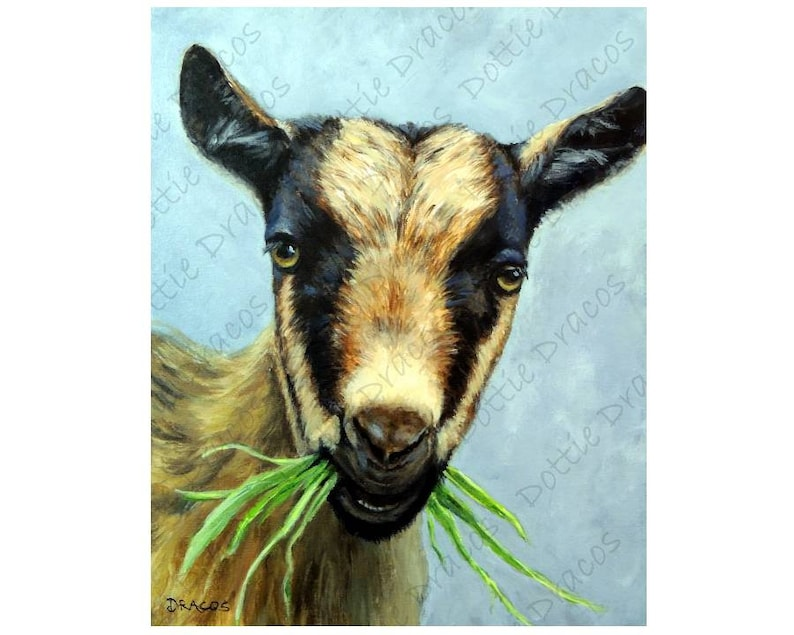 Original Painting, Goats, Nigerian Dwarf Goat, Farm art, Goat Art, by  Dottie Dracos, Farm Animal Art, Goat Painting, dwarf goat, grass
