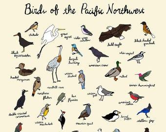 Birds of the Pacific Northwest Print - 9x12 or 11x17 Oregon Washington PNW Nature Art