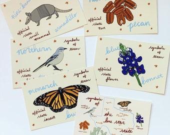 Texas Symbol Postcard Set - 6 TX Map State Symbols Lone Star Souvenir Postcards - Pecans, Blue Bonnet, Mockingbird, Armadillo, Butterfly