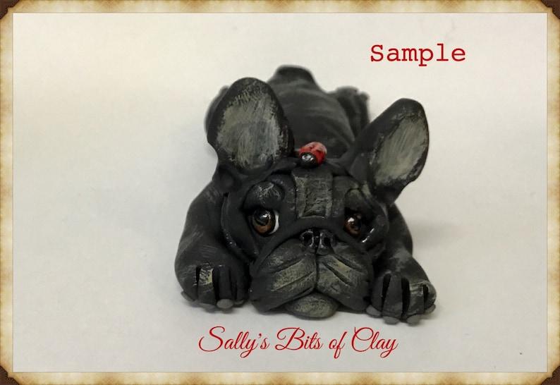 Black Brindle French Bulldog Dog On Tummy With Ladybug On Head Etsy