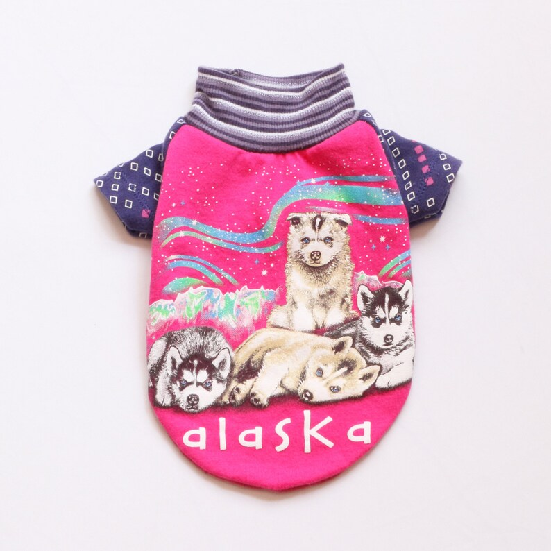 Pretty Aqua and White Star Fish Pattern Adult T-Shirt XL Patterns ts/_317982 3dRose Anne Marie Baugh