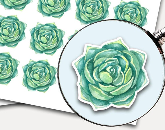 Succulent Stickers, Envelope Seals, Planner Stickers, Leaves Watercolor, Nature Greenery, Botanicals, Succulent (3876)