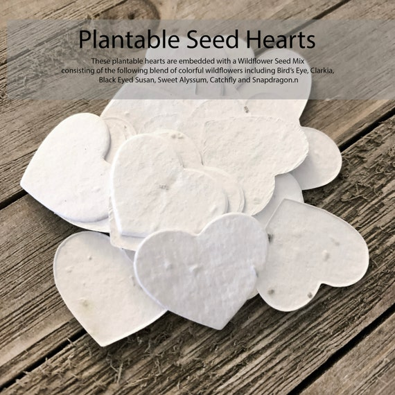 Plantable Seed Paper Hearts - Small
