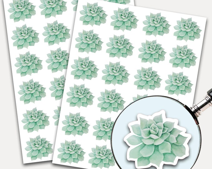 Succulent Stickers, Envelope Seals, Planner Stickers, Leaves Watercolor, Nature Greenery, Botanicals, Succulent (3384)