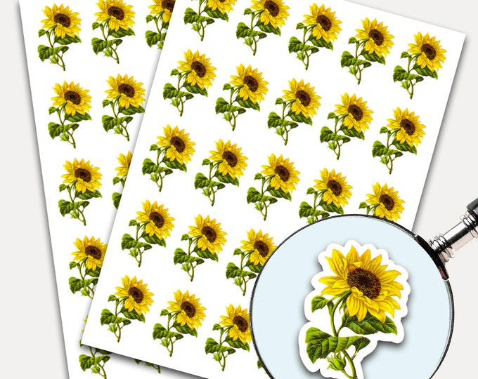 Sunflower Stickers, Envelope Seals, Planner Stickers, Floral Stickers, Watercolor, Yellow Flower, Botanical Flower (2836)