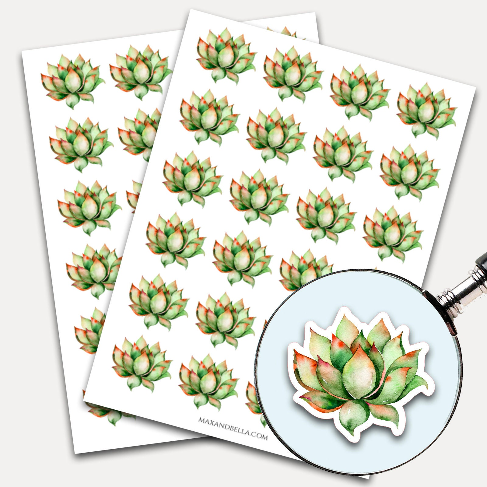 Succulent Stickers Envelope Seals Planner Stickers Leaves Watercolor Nature Greenery Botanicals Succulent 7630
