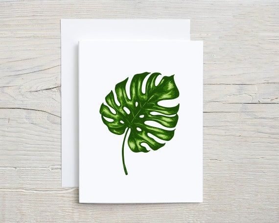 bali leaf card set    blank note cards    folded card    stationary set    card    thank you card   thinking of you card   2875
