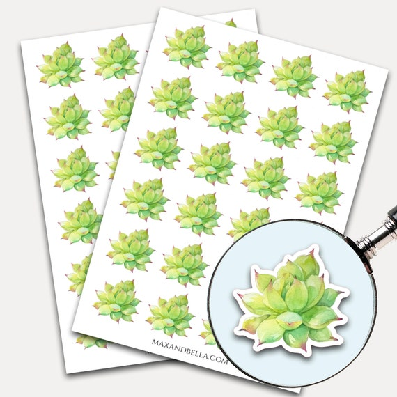 Succulent Stickers, Envelope Seals, Planner Stickers, Leaves Watercolor, Nature Greenery, Botanicals, Succulent (7280)
