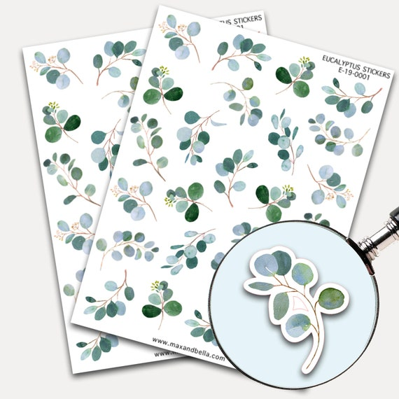 Eucalyptus Stickers, Envelope Seals, Planner Stickers, Leaves Watercolor, Nature Greenery, Scrapbook, Botanicals, Eucalyptus leaves