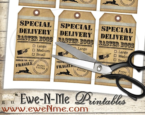 Easter Tags - Printable Tags - Special Delivery Easter Egg - Fragile Handle With Care - Shabby Rustic Farmhouse Style - PDF or JPG File
