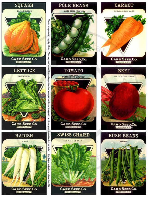 Old Seed Pack Printable Collage Sheet - Vegetable Seed Pack Images - tomato, radish, beet, lettuce, beans seed pack printables PDF, JPG file