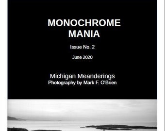 Monochrome Mania No. 2 - Michigan Meandering